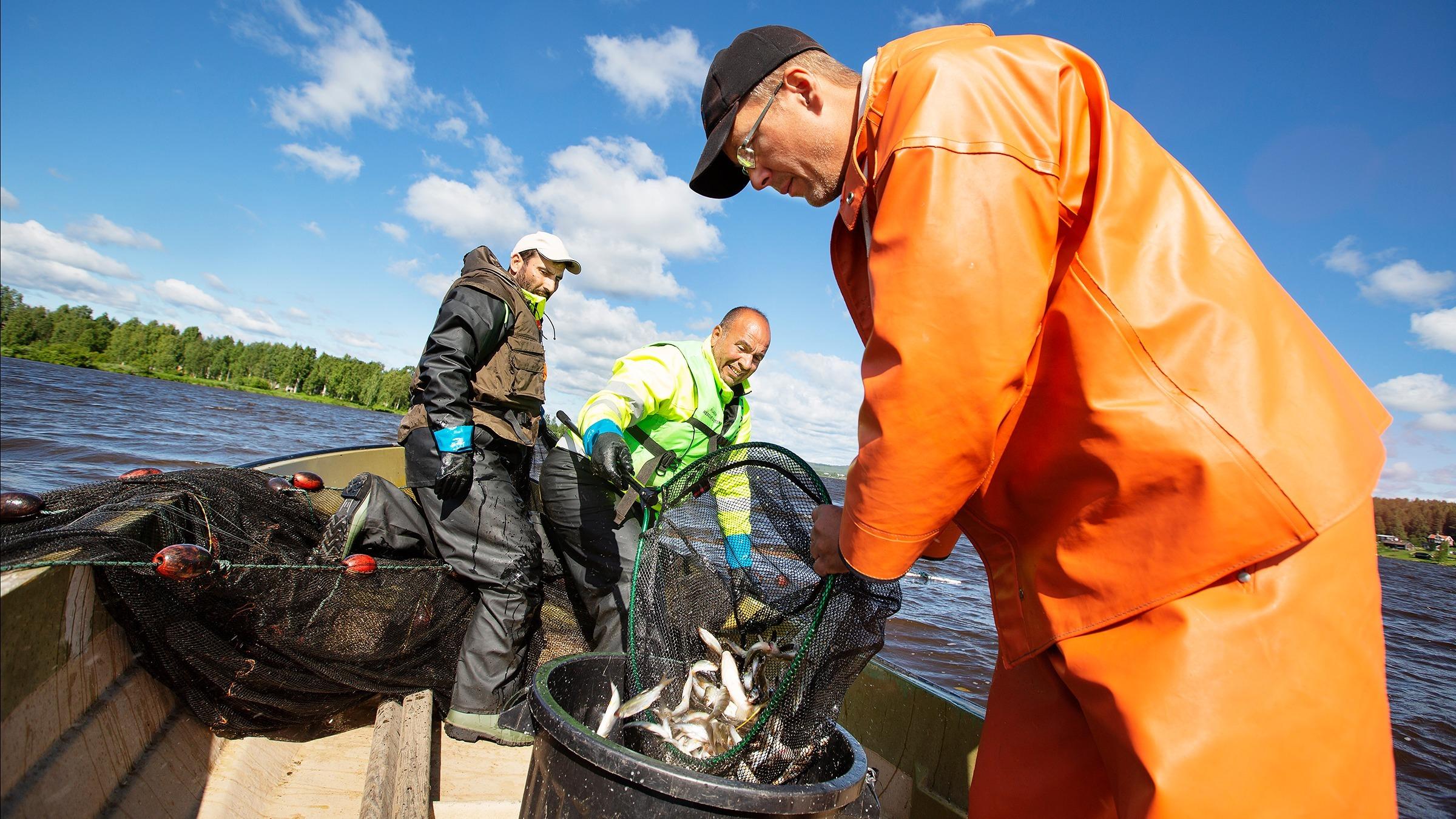 De fiskar för miljöns skull