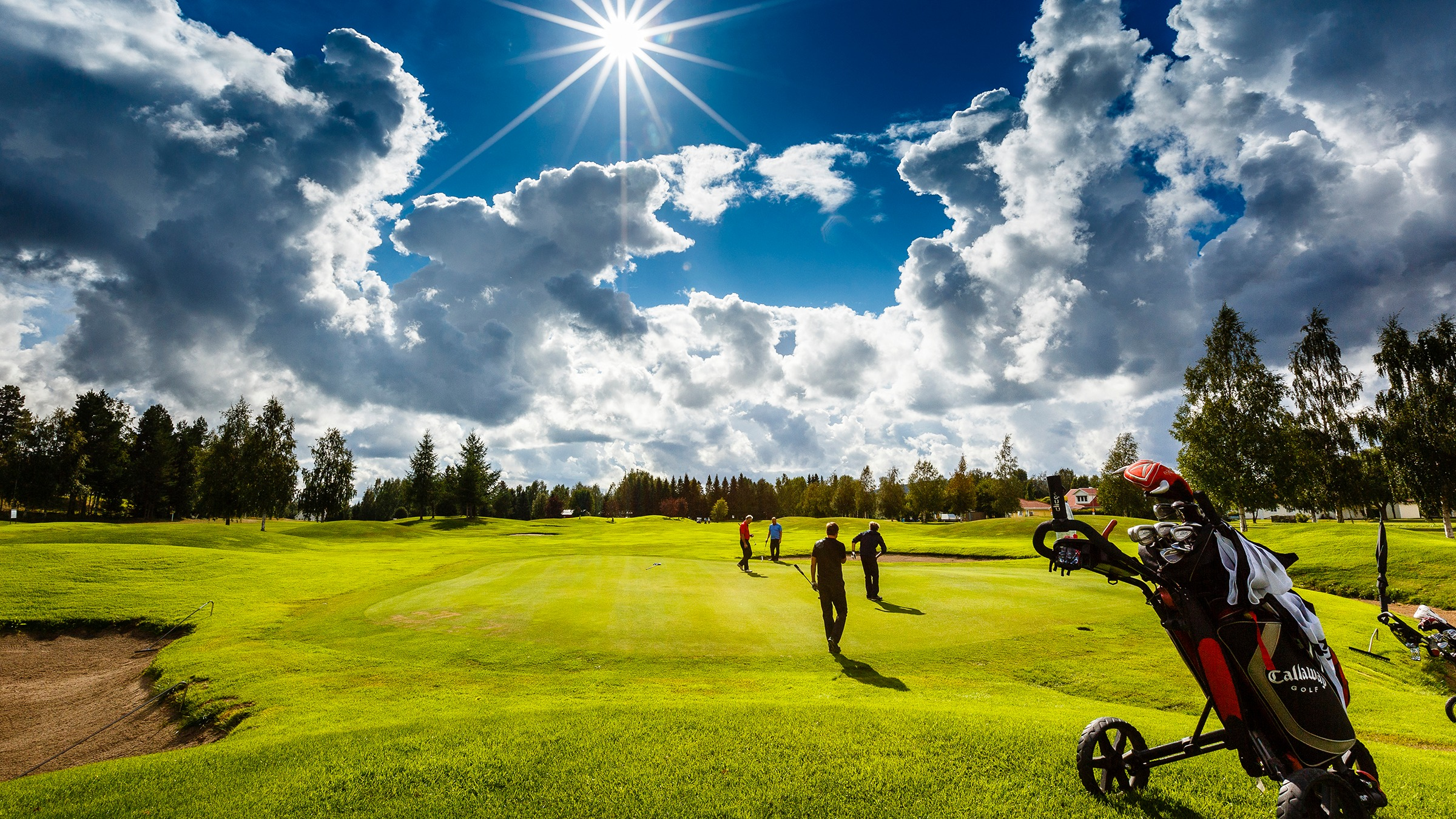 Golfbana i strålande sol. Fyra golfspelare på green. Vagn med golfbag i förgrunden.