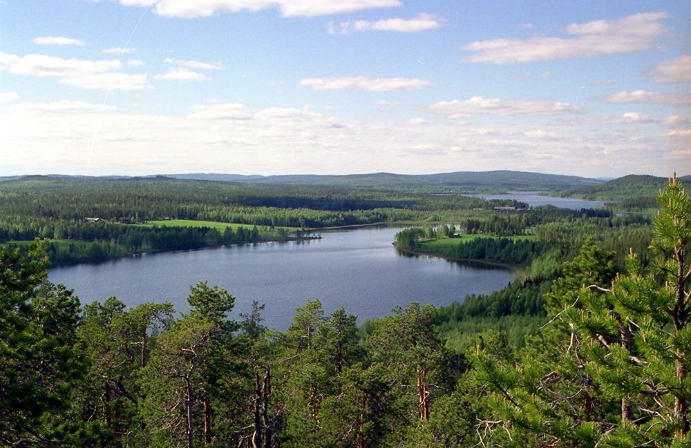 Vy över skog och sjö.