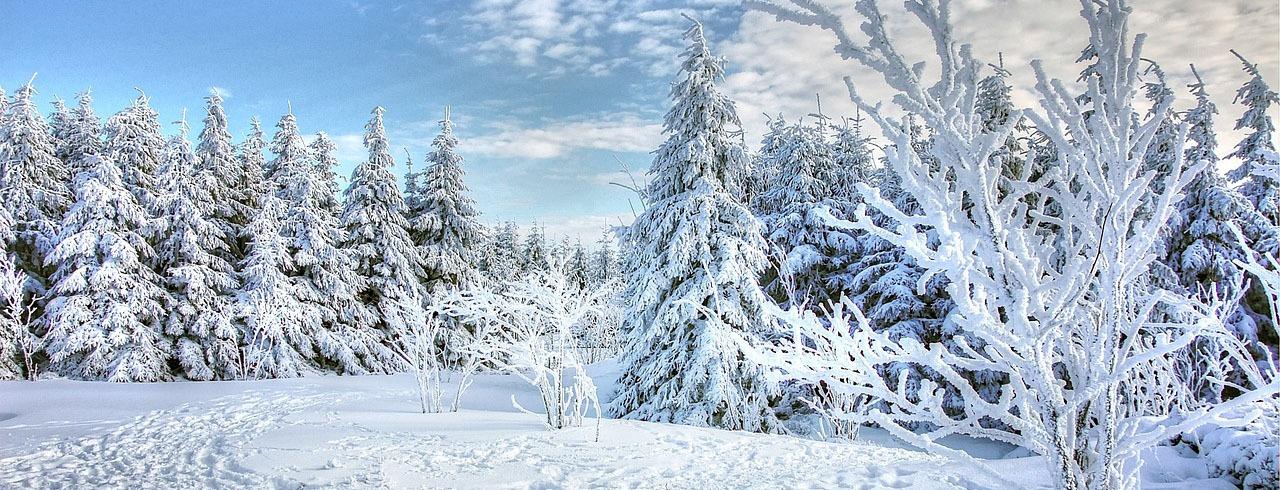 Snötäckt vinterlandskap.